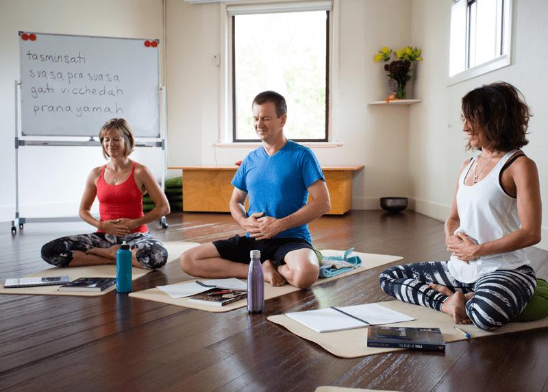 Yoga Sutra Studies with Michael de Manincor