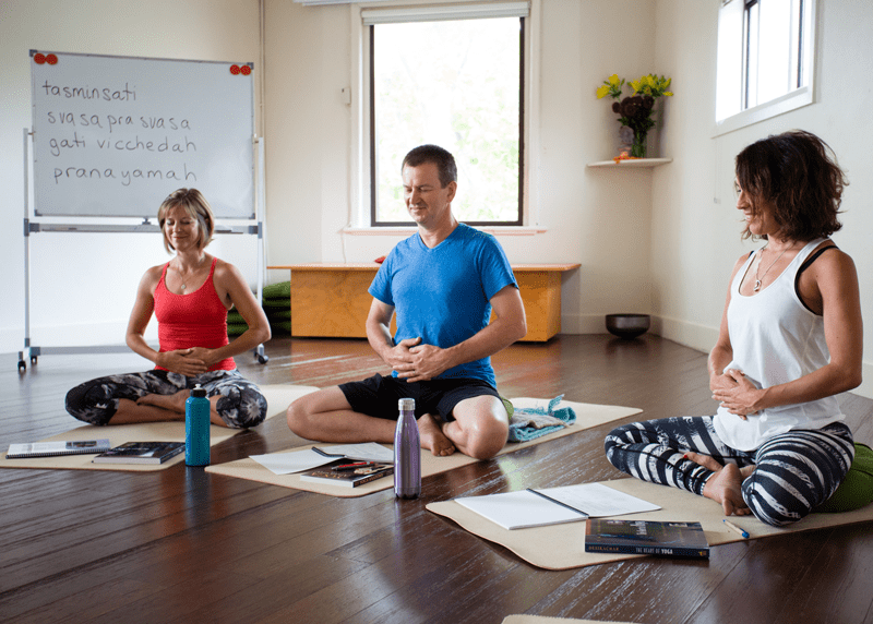 Yoga Sutra Studies with Michael de Manincor